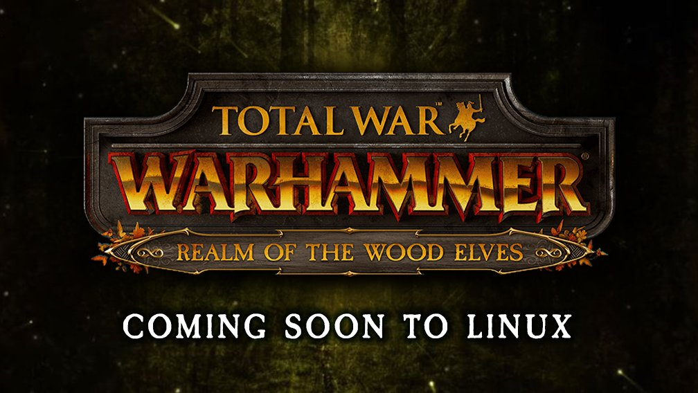 total war warhammer wood elves grand campaign guide